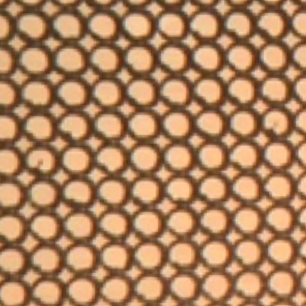 microfluidic reactor