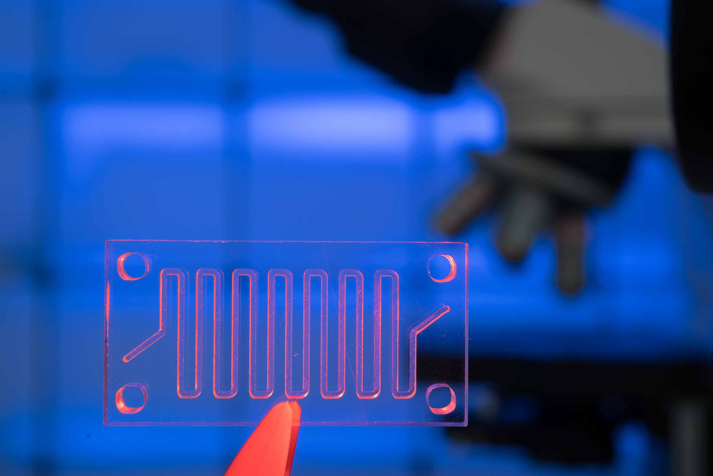 lab on a chip, organ on a chip, ooc device